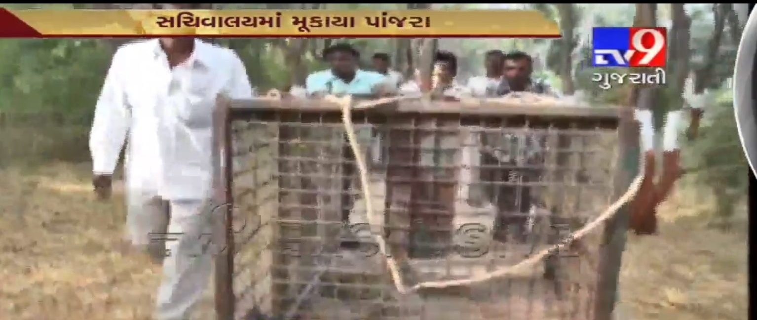 Gandhinagar_Tv9News