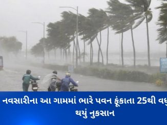Cyclone Maha Impact: Sheds of 25 houses blown away by winds in Navsari