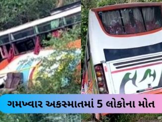 5 died and 15 injured after luxury bus meets with an accident on Mumbai-Pune highway