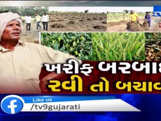 Mahisagar: Farms waterlogged during monsoon yet to be cleared, farmers fear failure of winter crops