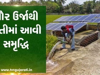 Farmers doing farming with solar panels