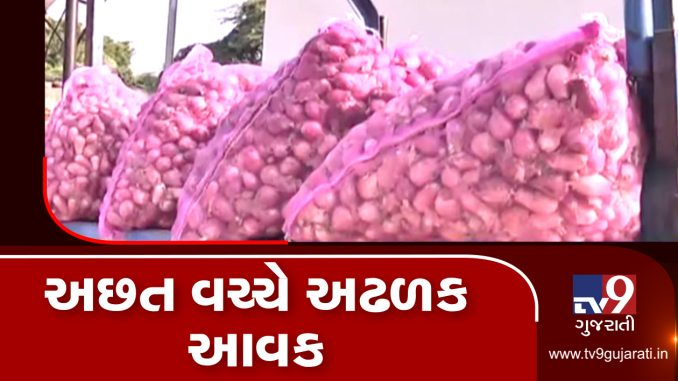 Jamnagar's Hapa market yard sees heavy onion inflow, farmers demand fair prices