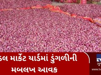 Rajkot: Farmers throng Gondal market yard to sell onion, procurement halted for next 4-5 days gondal market yard ma dungali ni mablakh aavak yard ma jagya oochi padta dungali ni aavak bandh karayi