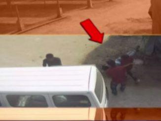 Student of Diwan Ballubhai school in Ahmedabad died during picnic trip near Vadodara