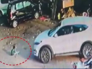 Kid crushed by reversing car near Ayurvedic cross roads, driver arrested- Vadodara