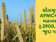 Gujarat All APMC Latest rates of 20th December 2019