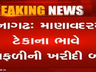Junagadh farmers irked as government stopped groundnut procurement kheduto 2 divas thi heran