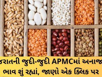 Gujarat All APMC Latest rates of 18th January 2020 Gujarat ni badhij APMC na Mandi rates
