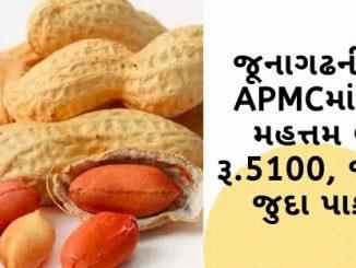 Gujarat All APMC Latest rates of 30 January 2020