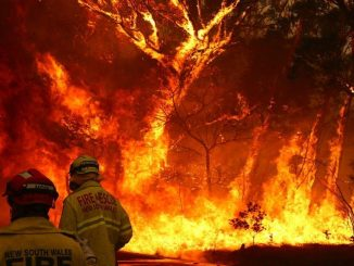 200-houses-destroyed-by-fire-in-australia-7-dead-
