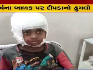Surat 11-years old kid attacked by leopard in Mandvi, forest team on toes surat na mandvi ma fari jova malyo dipda no aatank 11 years na balak par dipda e karyo humlo