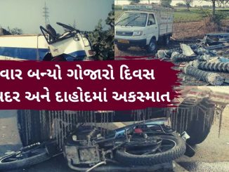 Six dead after the bus they were travelling in met with an accident in Junagarh, earlier today Dahod: 3 killed in accident on Limdi highway