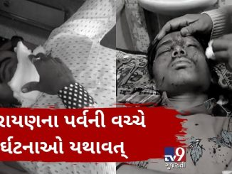Kite string becomes deadly, 1950 mishaps reported in Gujarat