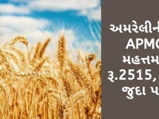 Gujarat All APMC Latest rates of 3 February 2020 Gujarat ni badhij APMC na Mandi rates
