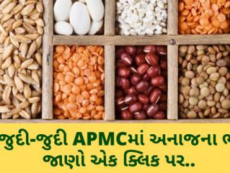 Gujarat All APMC Latest rates of 21 February 2020 Gujarat ni badhij APMC na Mandi rates