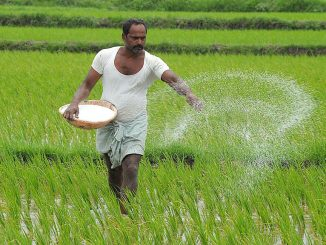 Panchmahal Expectations of farmers from Gujarat Budget 2020