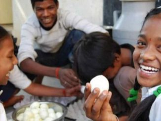 Dahod: Malnourished kids to get hen for daily consumption of eggs