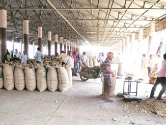 Junagadh Groundnut purchased at MSP kept in dilapidated godown in Keshod