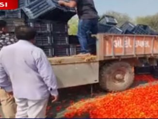 Fumed over unfair prices farmers throw tomatoes on road in Thasra Kheda