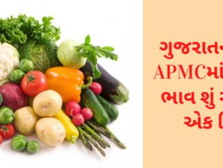 Gujarat All APMC Latest rates of 10 March 2020 Gujarat ni badhij APMC na Mandi rates