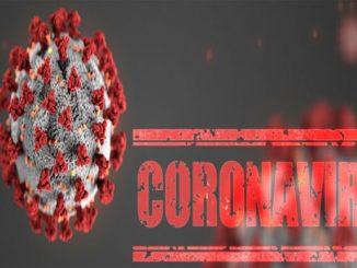 Maharashtra coronavirus cases jump to 1,078 Maharashtra ek j divas ma corona na vadhu 60 case nodhaya kul 1078 positive case