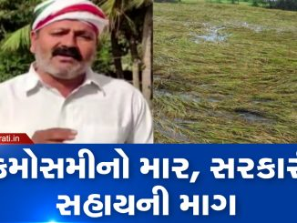 Unseasonal rain hits crops Gujarat Kisan Congress Pal Ambaliya demands relief package for farmers