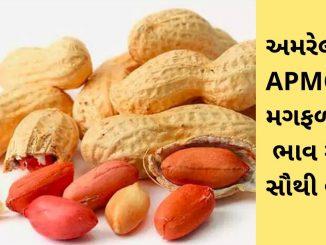 Gujarat All APMC Latest rates of 11th March 2020 Gujarat ni badhij APMC na Mandi rates