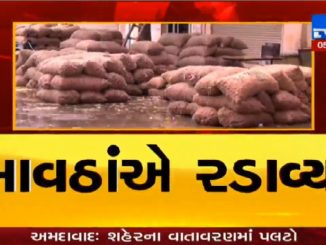 Unexpected rain causes damage of onions in Bhavnagar market yard
