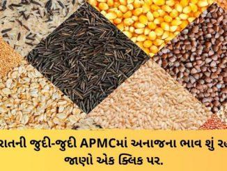 Gujarat All APMC Latest rates of 7th March 2020 Gujarat ni badhij APMC na Mandi rates