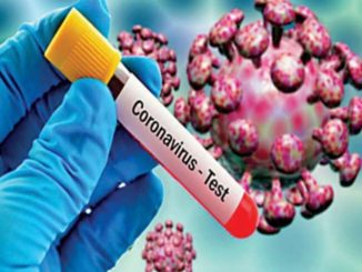 More 217 coronavirus cases reported in Gujarat, total 2624 cases
