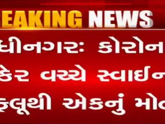 Elderly person dies of swine flu in Gandhinagar corona na kehar vache gandhinagar civil ma swine flu thi 1 nu mot