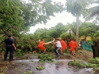 Cyclone Nisarga : Trees uprooted, vehicles damaged in Alibaug and Raigadh Cyclone nisarga Mumbai na anek sthale vruksho dharashai nichanvala vistaro ma rehta loko nu sthadantar