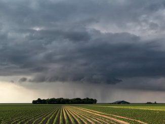 Parts of Gujarat likely to receive rainfall on June 14 jano kyare gujarat ma varsi shke chhe varsaad jano vigat