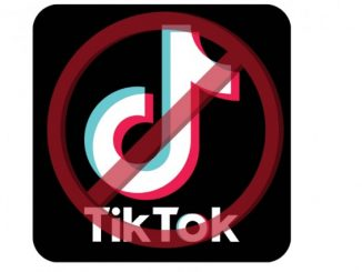 Due to Chinese App Titok Ban in India indigenous-app-sparked-5-lakh-downloads-in-72-hours