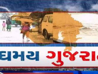 224 talukas of Gujarat received rainfall in last 24 hours