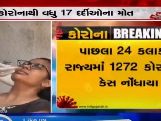 Gujarat reports 1272 new coronavirus cases, 1095 discharges and 17 deaths