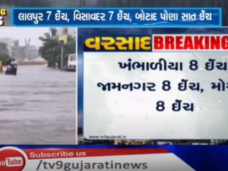 Rainfall in 250 talukas of Gujarat in last 24 hours