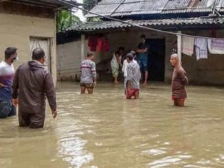 Gujarat Rains In last 24 hours 1564 people shifted to safe place