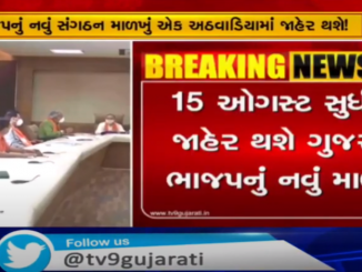 New structure of Gujarat BJP till August 15
