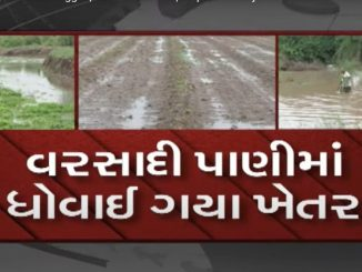 Heavy rain leaves farms waterlogged farmers worried Jetpur