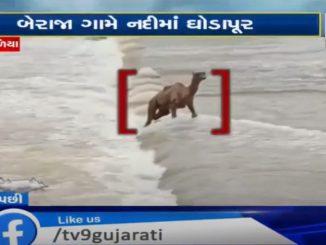 https://tv9gujarati.in/devbhumi-dwarka-…ano-videio-viral/ 
