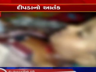 years old died after being attacked by leopard in Pavi Jetpur, Chhota Udaipur