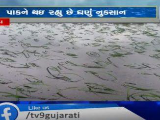 http://tv9gujarati.in/kheda-ma-kheduto…n-thavano-andaaj/