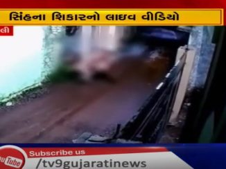 http://tv9gujarati.in/amreli-na-jafrab…vano-bahar-aavyo/