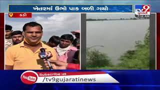 Farmers across Gujarat stare at huge loss due to excessive rainfall