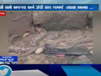 http://tv9gujarati.in/surendra-nagar-n…o-ma-bhay-felayo/ 