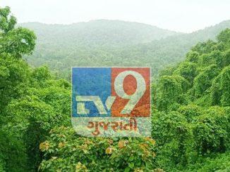 Bharuch na reserve forest ma mali aavya 2 nava waterfall, vanvibhage bane dodh ne pravasan sthad banava na prayas sharu karya