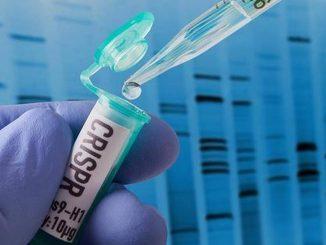 CRISPR, India's first desi gene based Covid test, gets approval CRISPR test ne manjuri ocha samay ma chokas parinam aapsse aa covid 19 test