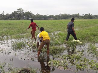 Heavy rain destroyed crops in Gir Somnath