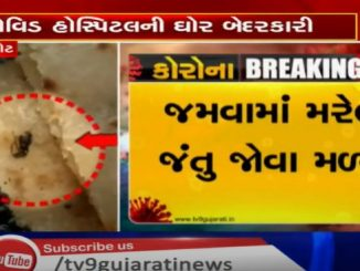 Insects found in Corona patients food at Covid hospital Rajkot